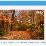 wpforo-embed-flicker